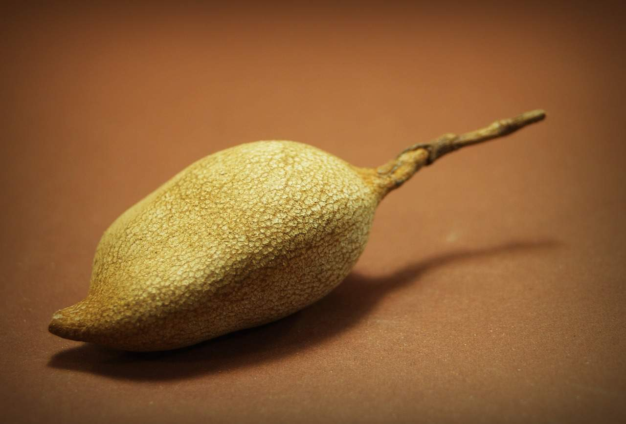 A close up of a pear